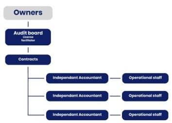 TIC Assurance structuur
